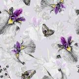 Naadloos patroon Waterverfiris, bladeren, vlinder stock illustratie