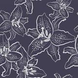 Naadloos patroon, witte lelie op een zwarte achtergrond Royalty-vrije Stock Afbeelding