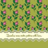 Naadloos rozenpatroon met de achtergrond van de kantoker Royalty-vrije Stock Fotografie