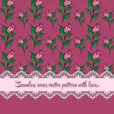 Naadloos rozenpatroon met kant purpere achtergrond Stock Afbeeldingen