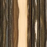 Naadloos textuurhout Stock Fotografie