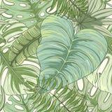 Naadloos tropisch palmbladenpatroon Stock Afbeelding