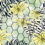 Naadloos tropisch patroon Gele bloemen, zwart-witte bladeren op een lichtgroene achtergrond stock illustratie
