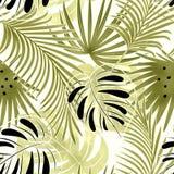 Naadloos tropisch patroon Kleurrijke bladeren, palmbladen op een lichte achtergrond Royalty-vrije Stock Afbeelding