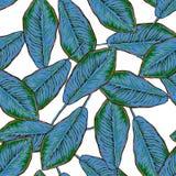 Naadloos tropisch patroon met banaanbladeren Stock Foto