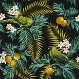 Naadloos tropisch patroon met bladeren, bloemen en papegaaien stock illustratie