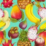 Naadloos tropisch patroon van hand getrokken verse sappige vruchten royalty-vrije stock foto's