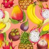 Naadloos tropisch patroon van hand getrokken verse sappige vruchten stock afbeeldingen