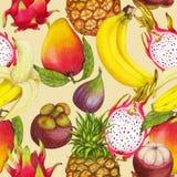 Naadloos tropisch patroon van hand getrokken verse sappige vruchten royalty-vrije illustratie