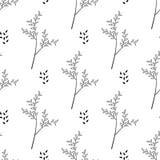 Naadloos van dunne takjes met bladeren Stock Afbeelding