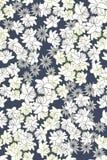 Naadloos vector bloemenpatroon op donkere achtergrond Stock Fotografie