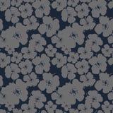 Naadloos vectorpatroon met bloemen van madeliefjes op een donkere achtergrond Royalty-vrije Stock Fotografie