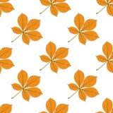 Naadloos vectorpatroon met de herfstbladeren Kastanjeblad Stock Afbeeldingen