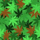 Naadloos vectorpatroon met marihuanabladeren, hennep, cannabis Stock Afbeelding