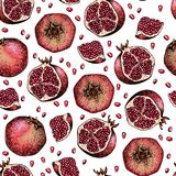 Naadloos vectorpatroon van gekleurde granaatappel Getrokken hand Gegraveerd sappig natuurlijk fruit Bevochtigend serum, gezondhei Royalty-vrije Stock Afbeelding