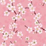 Naadloos vectorpatroon van tot bloei komende appeltakken Royalty-vrije Stock Afbeelding