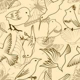 Naadloos vogel en vlinderpatroon Royalty-vrije Stock Afbeeldingen