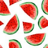 Naadloos watermeloenenpatroon Plakken van watermeloen, bessenachtergrond Geschilderd fruit, grafische kunst, beeldverhaal stock foto