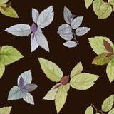 Naadloos waterverfpatroon Getrokken bladeren voor verpakking, behang, stof Het element van het ontwerp De waterverf schilderde bl royalty-vrije illustratie