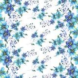 Naadloos Waterverfpatroon met bloemenvergeet-mij-nietjes op een witte achtergrond vector illustratie