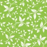 Naadloos wit bloemenpatroon op groen. Zieke vector Stock Foto