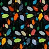 Naadloos Zwart Patroon met Kleurrijk Autumn Leaves stock illustratie
