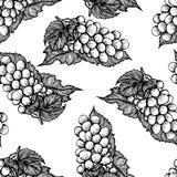 Naadloos zwart-wit patroon met bos van druiven stock illustratie