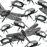 Naadloos zwart-wit patroon met insecten Stock Foto's