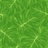 Naadloze achtergrond. Groene bladeren met een monster o Royalty-vrije Stock Afbeelding
