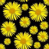 Naadloze achtergrond met bloemen Stock Afbeeldingen