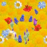 Naadloze achtergrond met bloemen Stock Foto