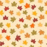 Naadloze achtergrond met de herfstbladeren Stock Foto