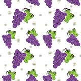 Naadloze achtergrond met druiven Stock Afbeelding
