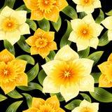 Naadloze achtergrond met gele gele narcisnarcissen De lentebloem met stam en bladeren Realistisch patroon Stock Foto's