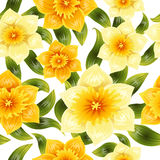 Naadloze achtergrond met gele gele narcisnarcissen De lentebloem met stam en bladeren Realistisch patroon Stock Foto