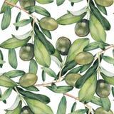 Naadloze achtergrond met groene olijftakken Stock Foto