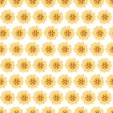 Naadloze achtergrond met madeliefje gele bloemen vector illustratie