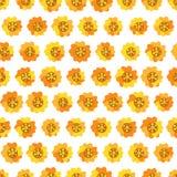 Naadloze achtergrond met madeliefje gele bloemen royalty-vrije illustratie