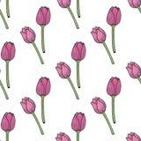 Naadloze achtergrond met positieve roze tulpen op witte achtergrond royalty-vrije illustratie