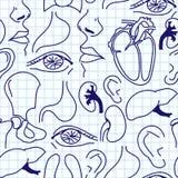 Naadloze achtergrond met schetsen van menselijke organen. Royalty-vrije Stock Foto