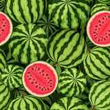 Naadloze achtergrond met watermeloenen Vector illustratie royalty-vrije stock foto's
