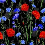 Naadloze achtergrond met wildflowers Vectorwaterverfimitatie vector illustratie