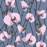 Naadloze achtergrond van tot bloei komende orchideebloemen en stammen Royalty-vrije Stock Fotografie
