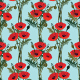Naadloze backgro met rode bloempapaver Royalty-vrije Stock Afbeelding