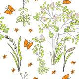 Naadloze behang wilde bloemen Royalty-vrije Stock Fotografie