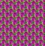 Naadloze bloemachtergrond Stock Foto's