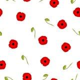 Naadloze bloemen rode de Papavers kleine bloemen van patroonstylization met knop op wit Stock Fotografie