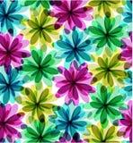 Naadloze bloemenachtergrond Stock Fotografie