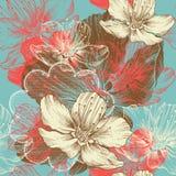 Naadloze bloemenachtergrond met bloemenappel, han Stock Afbeelding