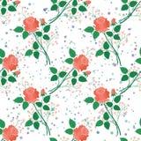 Naadloze bloemenachtergrond, rozen Stock Afbeeldingen
